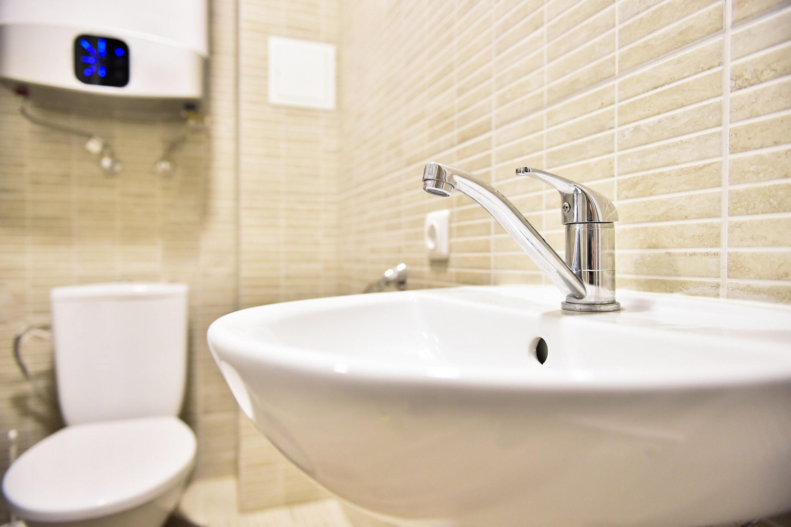 Dviviečio kambario dušas ir tualetas (2)